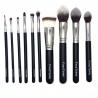 SET PROFESSIONAL BRUSHES & TROUSSE